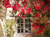 Kochreise Zypern